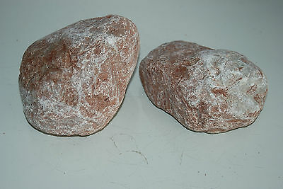 Natural Aquarium Stunning Tahiti Stone Suitable For All Aquariums 2