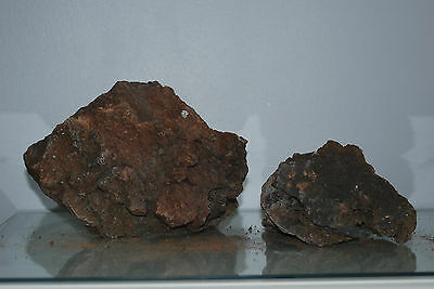 Natural Aquarium Lava Rock 2 Medium Sized Pieces Suitable for All Aquariums  1J