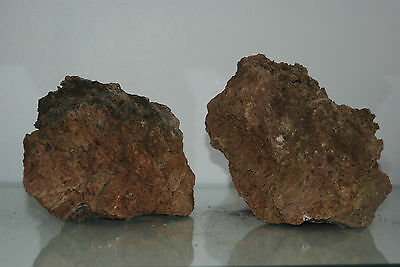 Natural Aquarium Lava Rock 2 Medium Sized Pieces Suitable for All Aquariums  1B