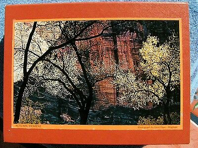 1971 Springbok Bookcase Puzzles Reflections Autumn Moment Ernst Haas-Magnum