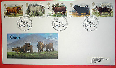 GB illustrated first day cover with special handstamp - 1984 Cattle - Oban
