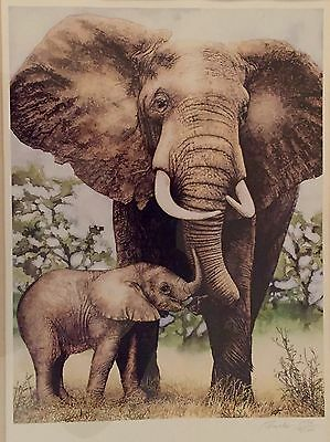 Lenox Elephant Endearment Signed & Numbered Print Picture Ian Forester