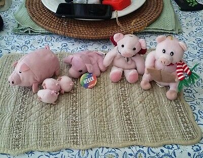 Five Assorted Small Pigs