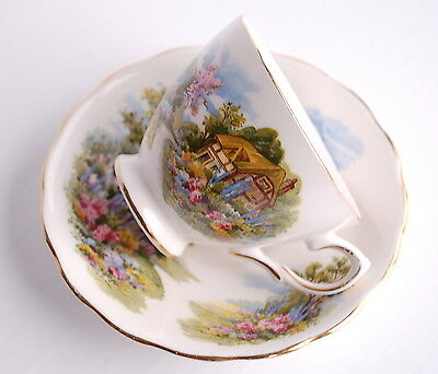 Royal Vale Homestead Country Cottage Vintage Bone China Tea Cup and Saucer