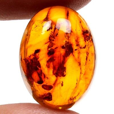 6.50 Carats. BALTIC AMBER Cabochon Loose Gemstone Oval 20x15 mm Top Supplier