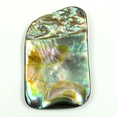Excellent ABALONE SHELL 28x18 mm FANCY Flat  Gemstone 10.50 Cts For Jewelry !