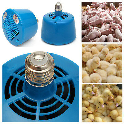 E27 220V 100-300W Chickens Pig Heat Warm Lamp Brooder for Livestock and Poultry