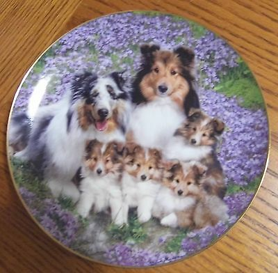 Danbury Mint Sheltie Family plate set (set of 3)