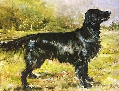 Flatcoat Retriever Sale Of Unmounted Prints