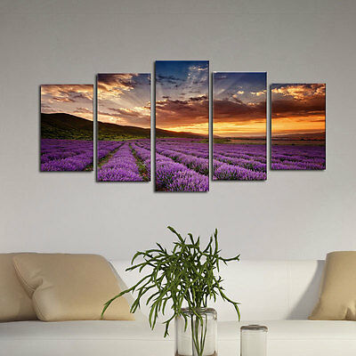 Framed Abstract Canvas Art Print Photo Wall Home Decor Poster Landscape Lavender