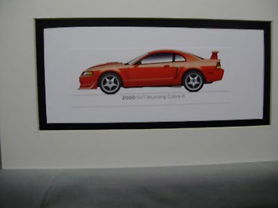 2000  Ford Mustang SVT Cobra R   From  50 Year Anniversary Exhibit by artist