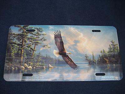 Eagle  Flying  Picture  Plate  (Pk37)