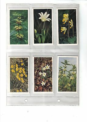 Player's Grandee Britain's Wild Flowers.Issued 1986.Full set of 30.