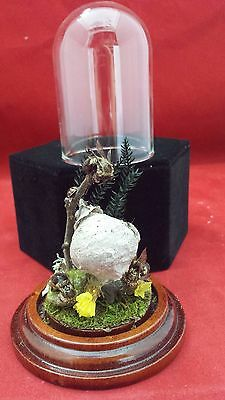 *  4 Real Taxidermy Bees and Hive in glass Dome Display! insects-bee--bug-#1