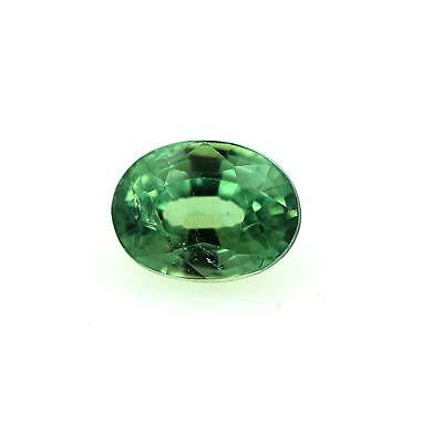 GARNET DEMANTOID . 0.60 cts . IF. Ural Mountains, Russia