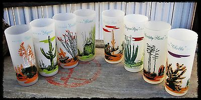 """8 Vtg 1950s BLAKELY Gas & Oil ARIZONA Cactus GLASSES Frosted ICE TEA 6-3/4""""T"""