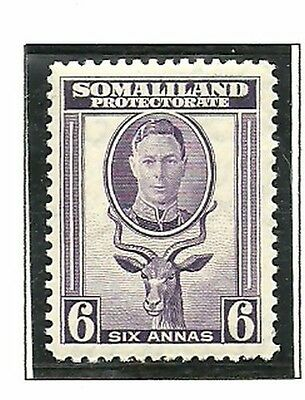 Album Treasures Somaliland Protectorate Scott # 101  6a George VI Kudu MNH