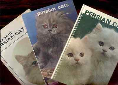3 Persian Cat Books Fine Reading For The Cat Lover