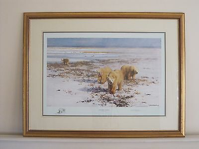 David Shepherd Lone Wanderers of the Arctic Limited Edition Print - Polar Bears