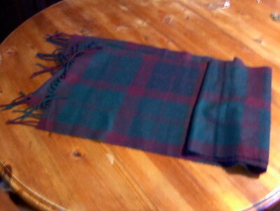 Men's Scarf in purple and green