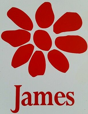 james the band tim booth magnet white / red