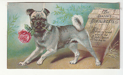 The Season's Compliments Dog w Pink Rose Christmas Emb Victorian Card c1880s