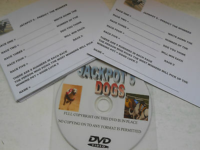 Jackpot 5 Dog Racing Dvd = New Idea For Race Nights Great Fun / Fundraiser