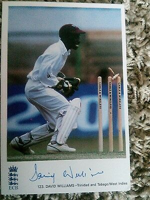 signed david williams classic cricket card