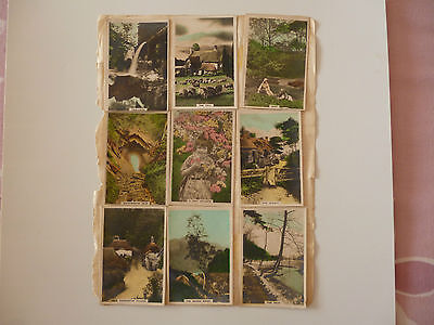 Cavanders 1926 Cigarete Cards (Hand Painted) A Camera Study