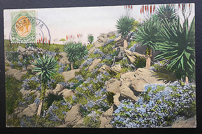 South Africa Mixed Franking German South West Africa Post Card Clean Hand Tinted