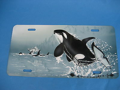 Whale Picture  Plate  Sign (Pk129)