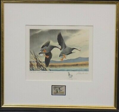 RW39 1972 FEDERAL  DUCK STAMP PRINT Emperor Geese by Cook Artist Proof Remarqued
