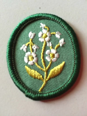 Girl Guides / Scouts Patrol 1 Flower