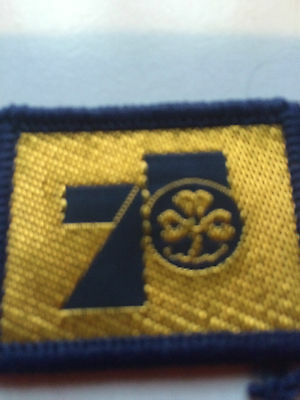 Girl Guides / Scouts 75 Guides
