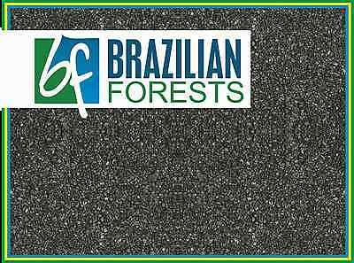 RIO NEGRO2 RIVER-Premium Gravel Substrate AQUARIUM - FISHTANK -Brazilian Forestd
