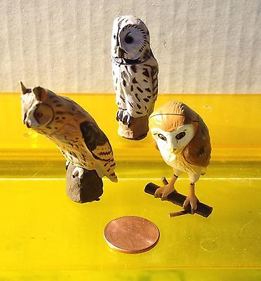 3 different ChocoEgg owls, barn owl ChocoQ Ural owl, detailed!