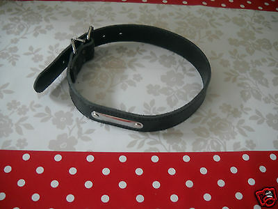 Collier en cuir MARTIN SELLIER pour grand chien ( type Labrador ) Taille L NEUF