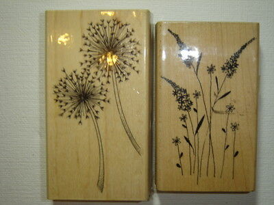 Penny Black Rubber Stamps x 2 (Sparklers and Aspire)