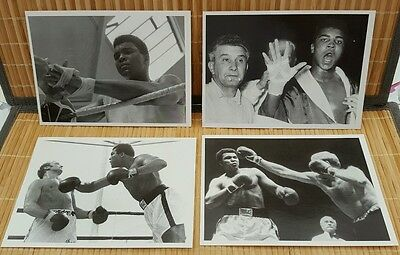 Muhammad ale . Clay boxing Modern postcards