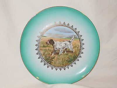 English Setter Dog Porcelain Collectible Plate Made in Bavaria
