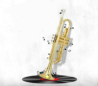 Top Grade Professional B Flat Gold Color Brass Musical Instruments Trumpet #