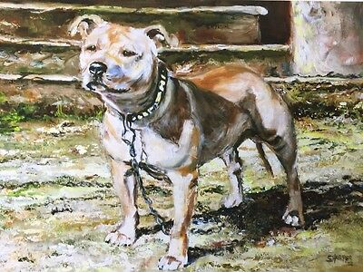 Staffordshire Bull Terrier Sale Of Unmounted Prints