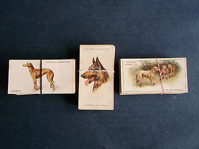 3 x Full Sets Players ( Dogs )  ( Very Good / Excellent )  1920's
