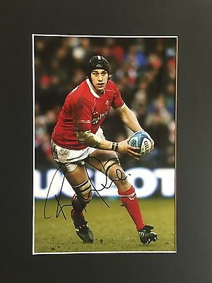 Ryan Jones Signed 16 X 12 Mounted Photo Wales Rugby Piece + *coa*