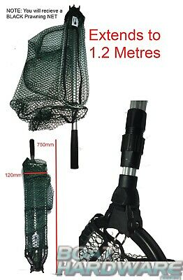 Fish Prawning LANDING NET Telescopic Pole Catch & Release Folds & Extends 1.2m