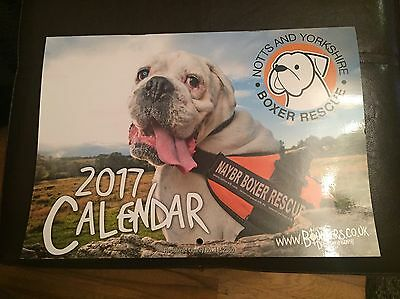 Notts And Yorkshire Boxer Rescue Calendar 2017