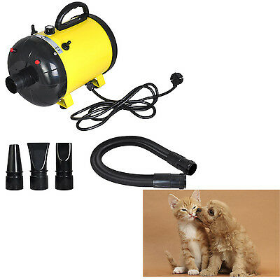 dog Cat Animal Air Blower Adjustable 2-Speed Grooming Pet Hair Dryer 2400W  2016