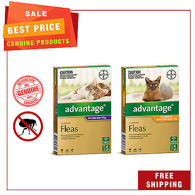 Advantage for Cats All Sizes 4 Pipettes flea treatment for cats