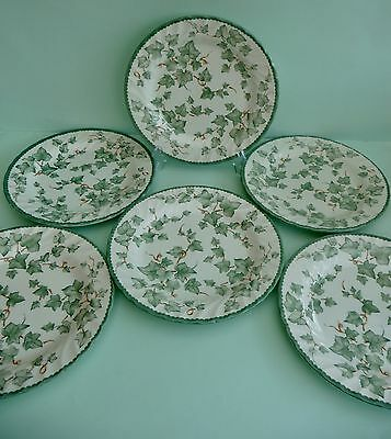 SET OF 6 BHS 'COUNTRY VINE' DINNER PLATES 26cm - FAB CONDITION
