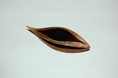 Wooden Tatting Shuttle With Sharp Pick Made in Walnut With Ebony Inlay